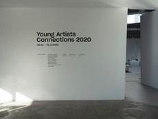 Young Artists Connections '20, MNAC, Bucharest