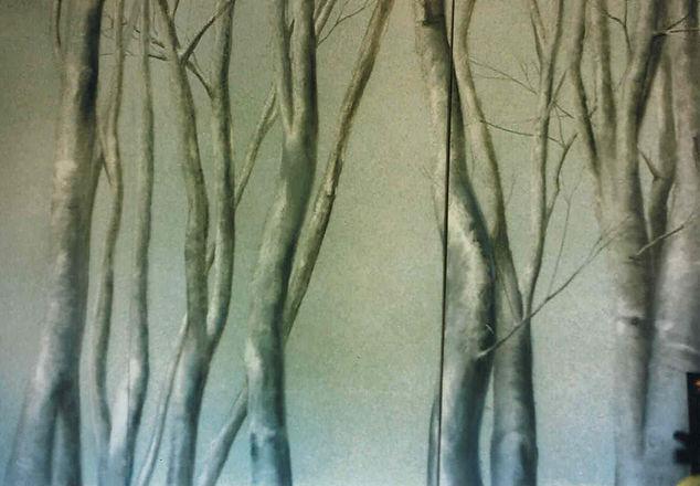 Silver birch room divider screen