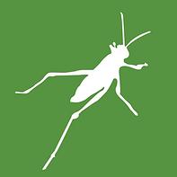 grasshopper-3d-logo-B55A18550D-seeklogo.