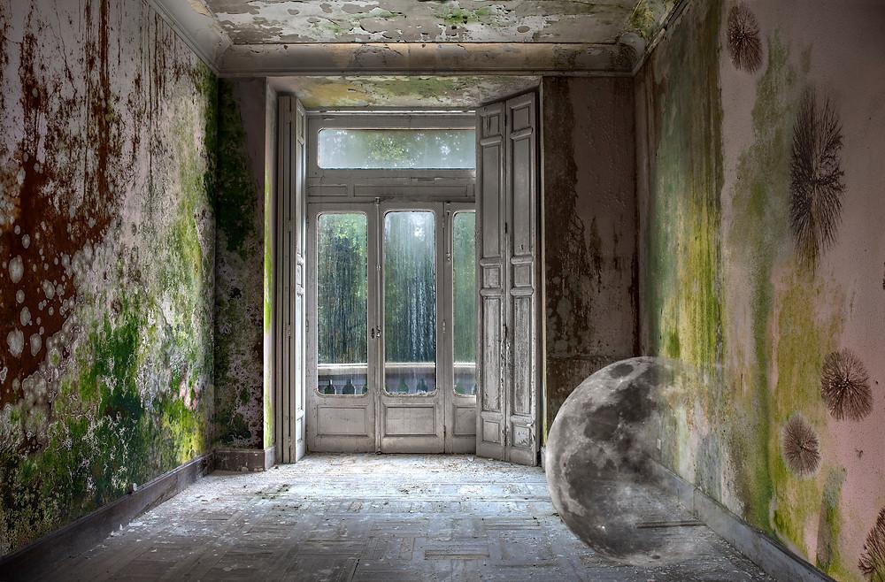 The Room of the Moon (Leticia Felgueroso), 2020.