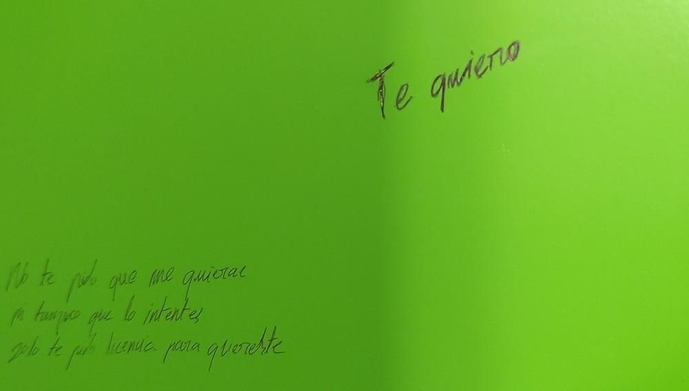 Detalle de la instalación 'Licencia de amor B y P'.