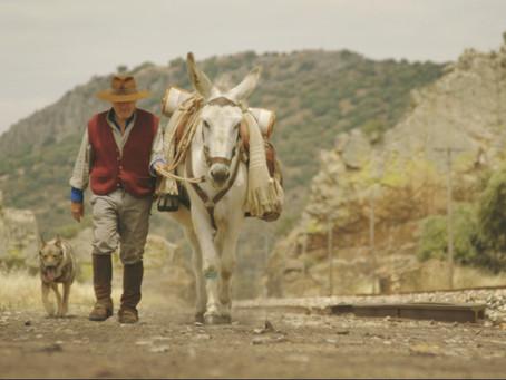 L'Alternativa: Barcelona se convierte en la Capital del Cine Indie