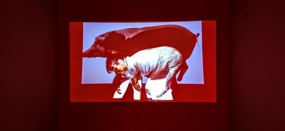 María Alcaide, Piel (Carne de mi carne), Videoinstalación. 2021.