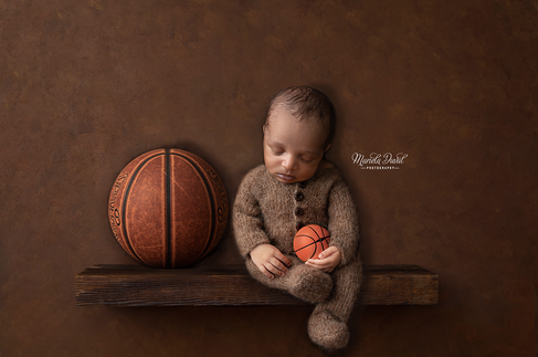 2019-Husman-shelf-brown-basketball copy.