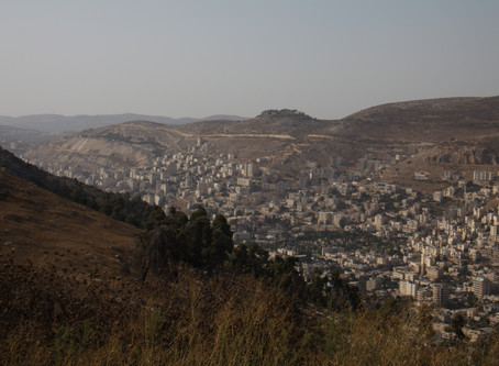 On the Road in Palestine: a Story of Business Resilience
