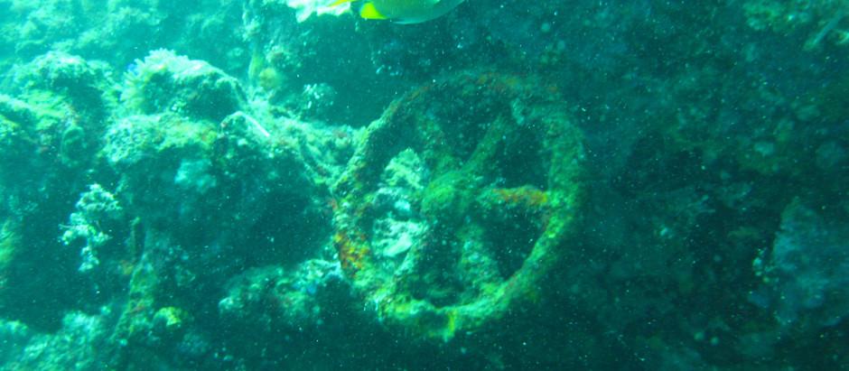 The Liberty: Bali's Perfect Shipwreck