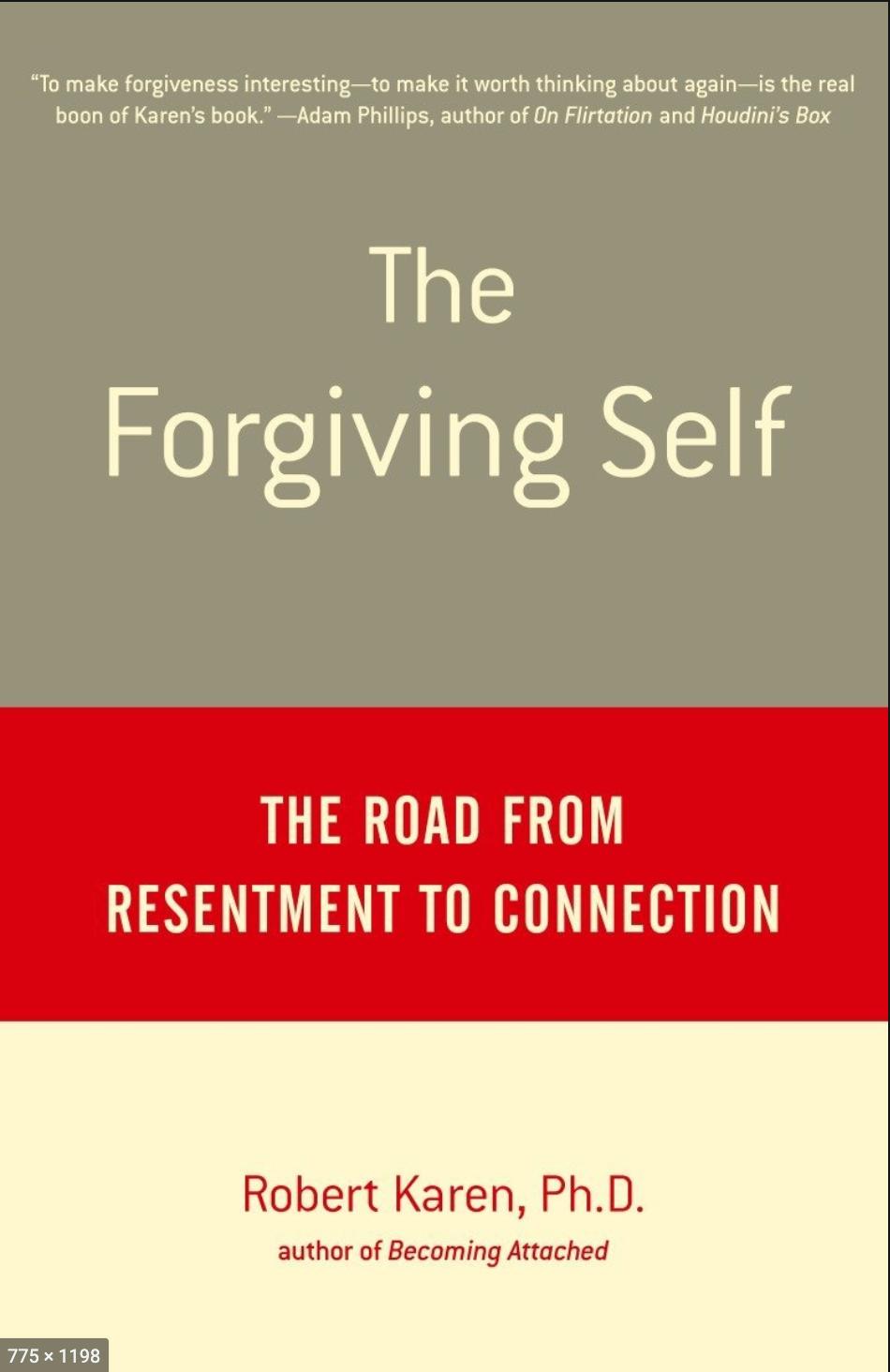 The Forgiving Self book