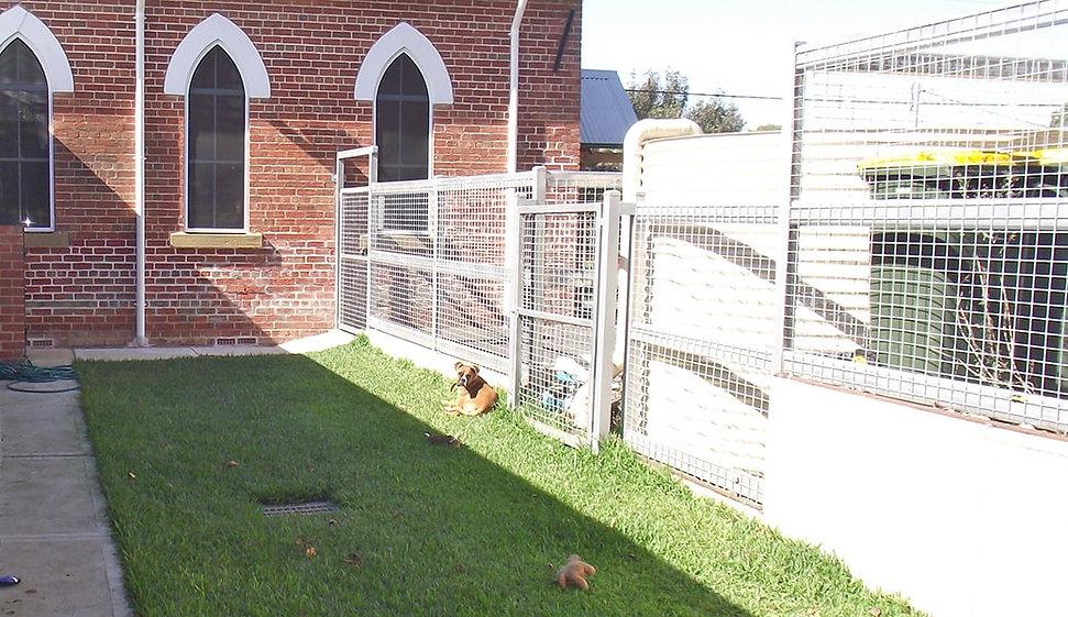 19-dog-exercise-yard.jpg