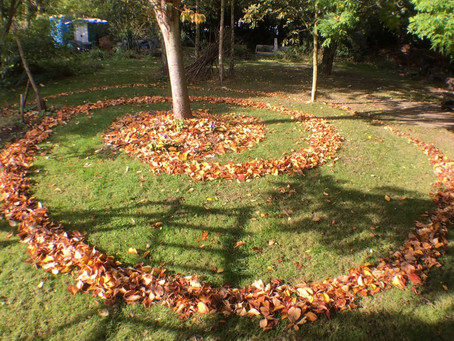 Falling Leaves, Tulip Planting & Mowing