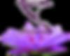 zenergy-logo-1.png