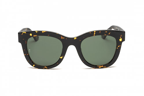 Wonderland | Colony Sunglasses