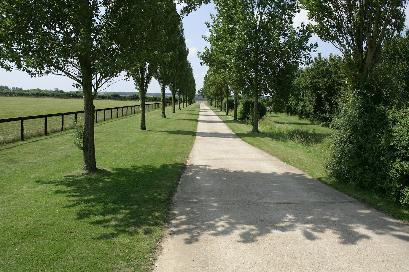 Driveway at Great Bradley Oak Stud stable specialising in breaking racehorses turn out for foals and mares