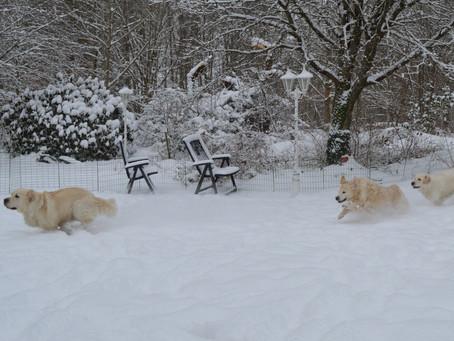 Kul med snö...