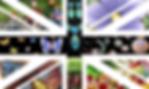 Draft Logo 2_edited.png