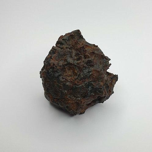 117 grams BABY METEORITE SERICHO HABASWEIN Pallasite - KENYA