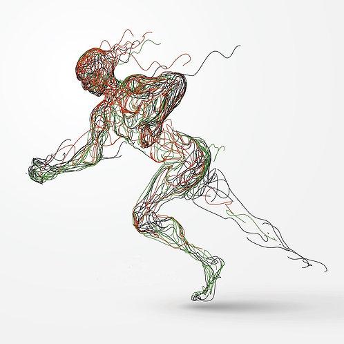 Elite Athlete Epigenetic Report
