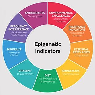 Epigenetic Indicators.jpg