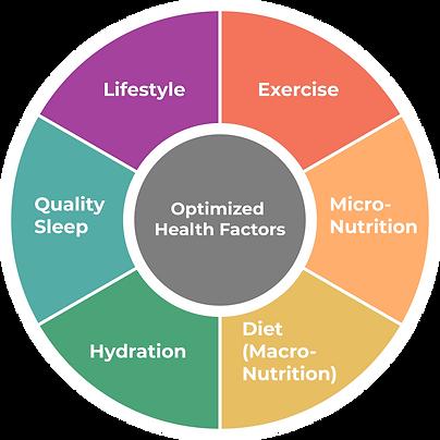 Optimized Health Factors.png