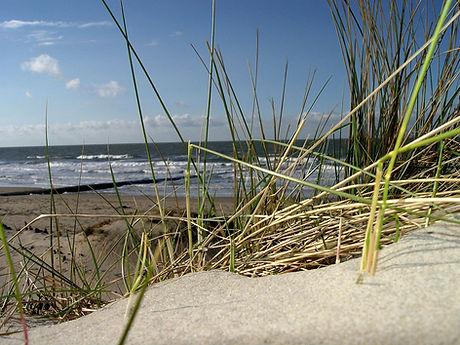Chalet Luttikduin Strand Callantsoog Camping Duinen Noordzee