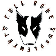 full bore logo.jpg