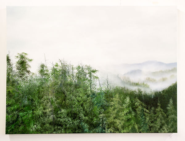 "Through the Mist, 30x40"" Rivers Inlet Exhibit"