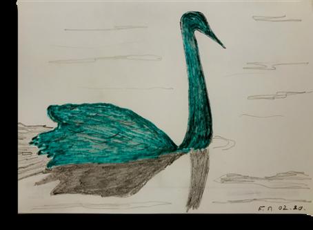Will black swans cross green swans?