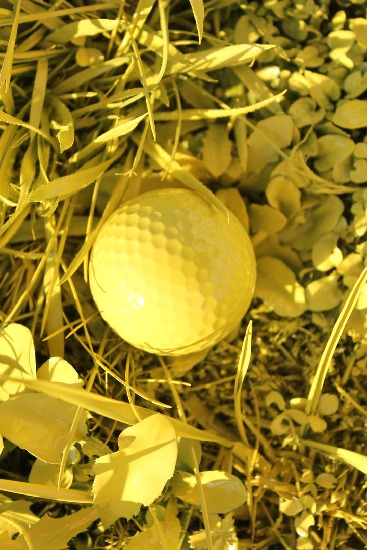 yellow golf nature