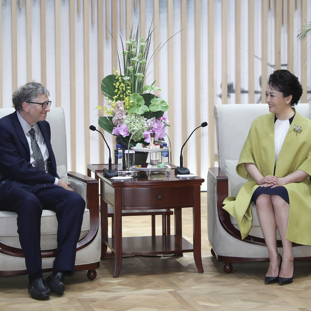 Peng Liyuan & Bill Gates