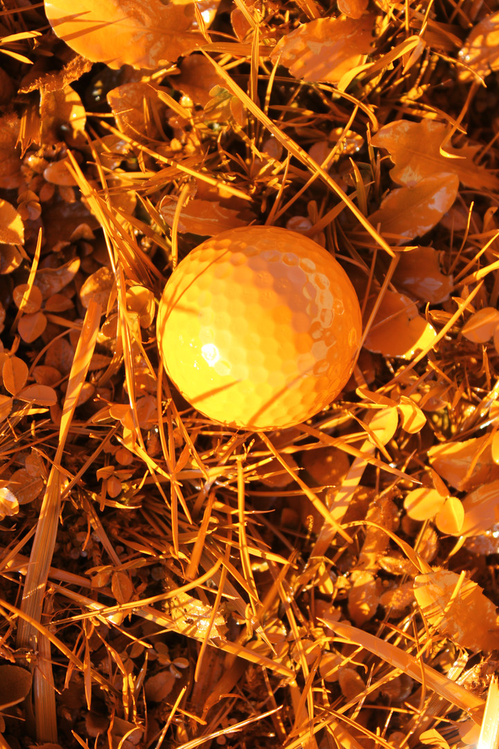 orange golf nature