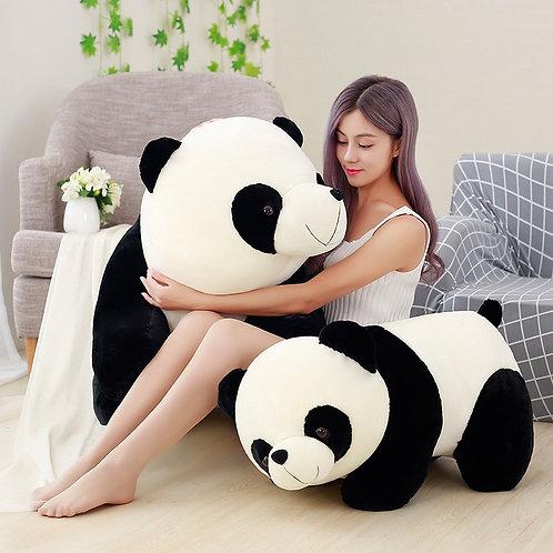 """Popo"" The Panda"