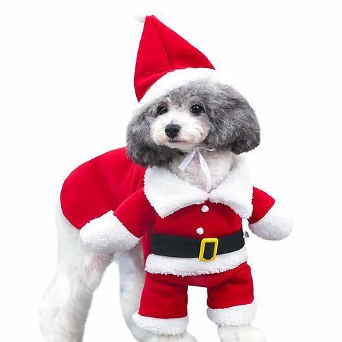 Animal Santa Costume