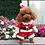 Thumbnail: Animal Santa Costume