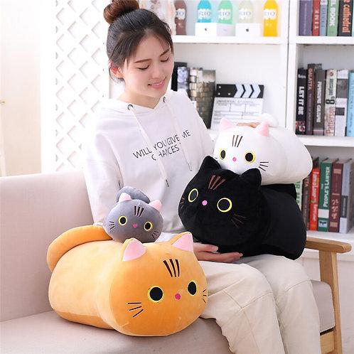 The Seiji Kitten Family