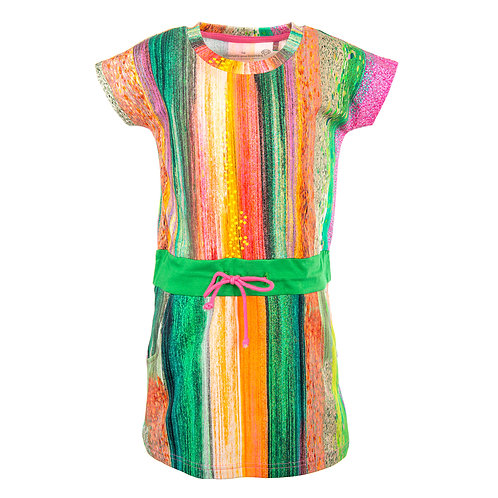 Stones and Bones Dress Multicolor