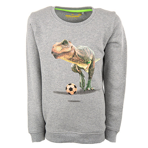 Stones and Bones Sweater Dino Football