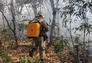 Bombeiros e servidores da Prefeitura combatem incêndio no Assentamento Patativa, em São Gabriel