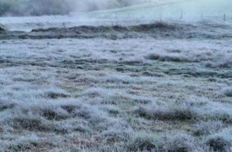 Onda de frio chega com geada forte e mínima de -1,5ºC em MS