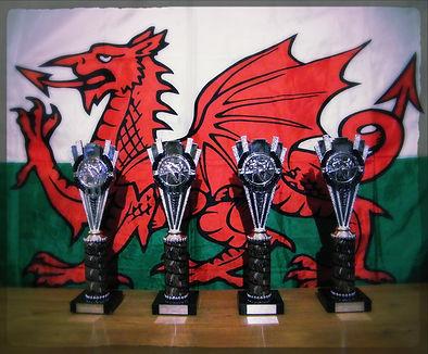 ITF Wales Open Medals
