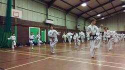 Team Taekwondo Bending Stance