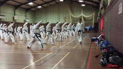 Team Taekwondo Rising Block