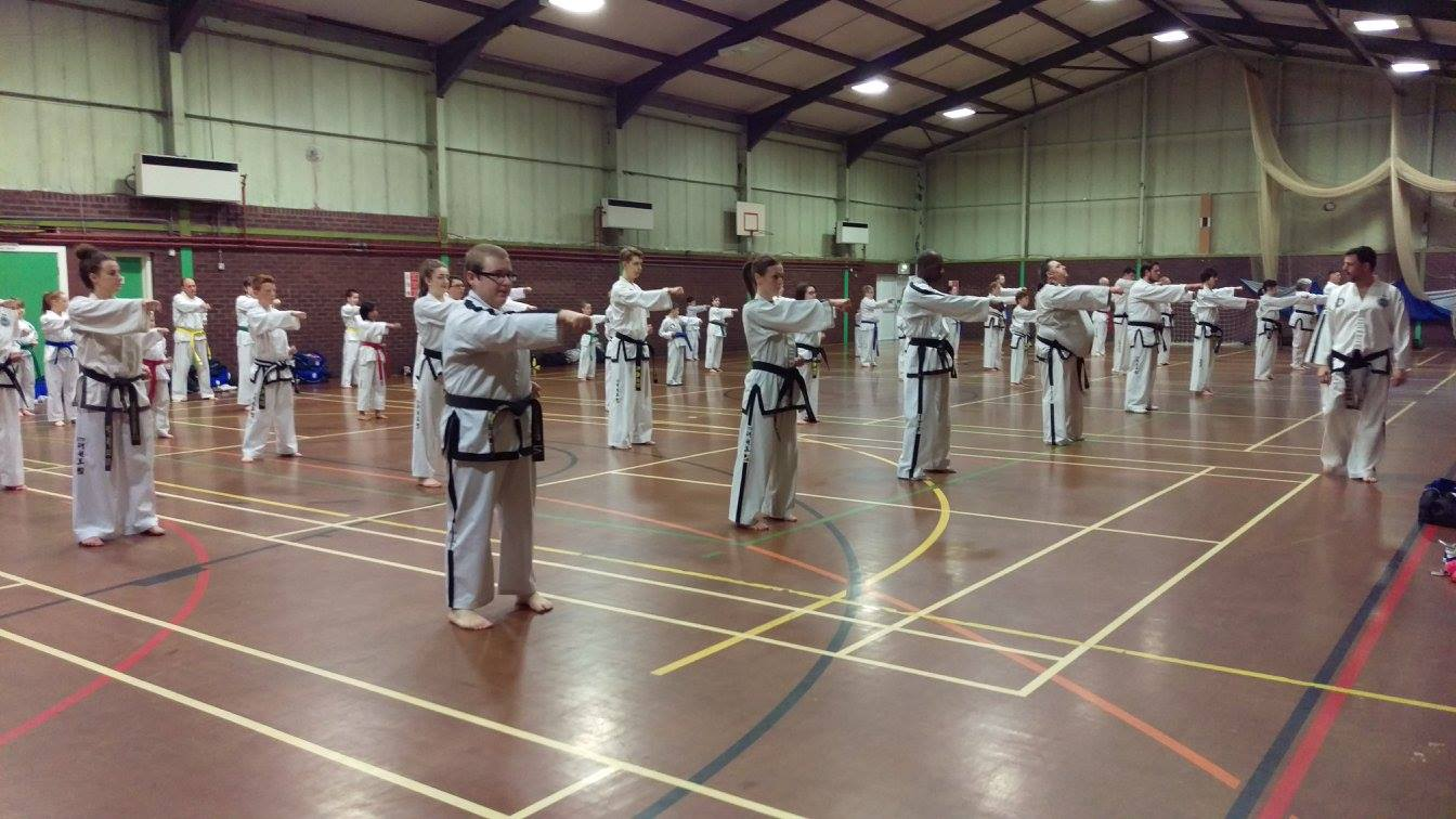 Team Taekwondo Punching