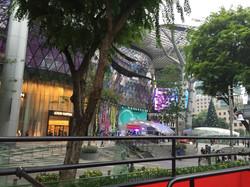 Singapore Shops
