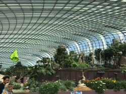 Flower Dome - Singapore