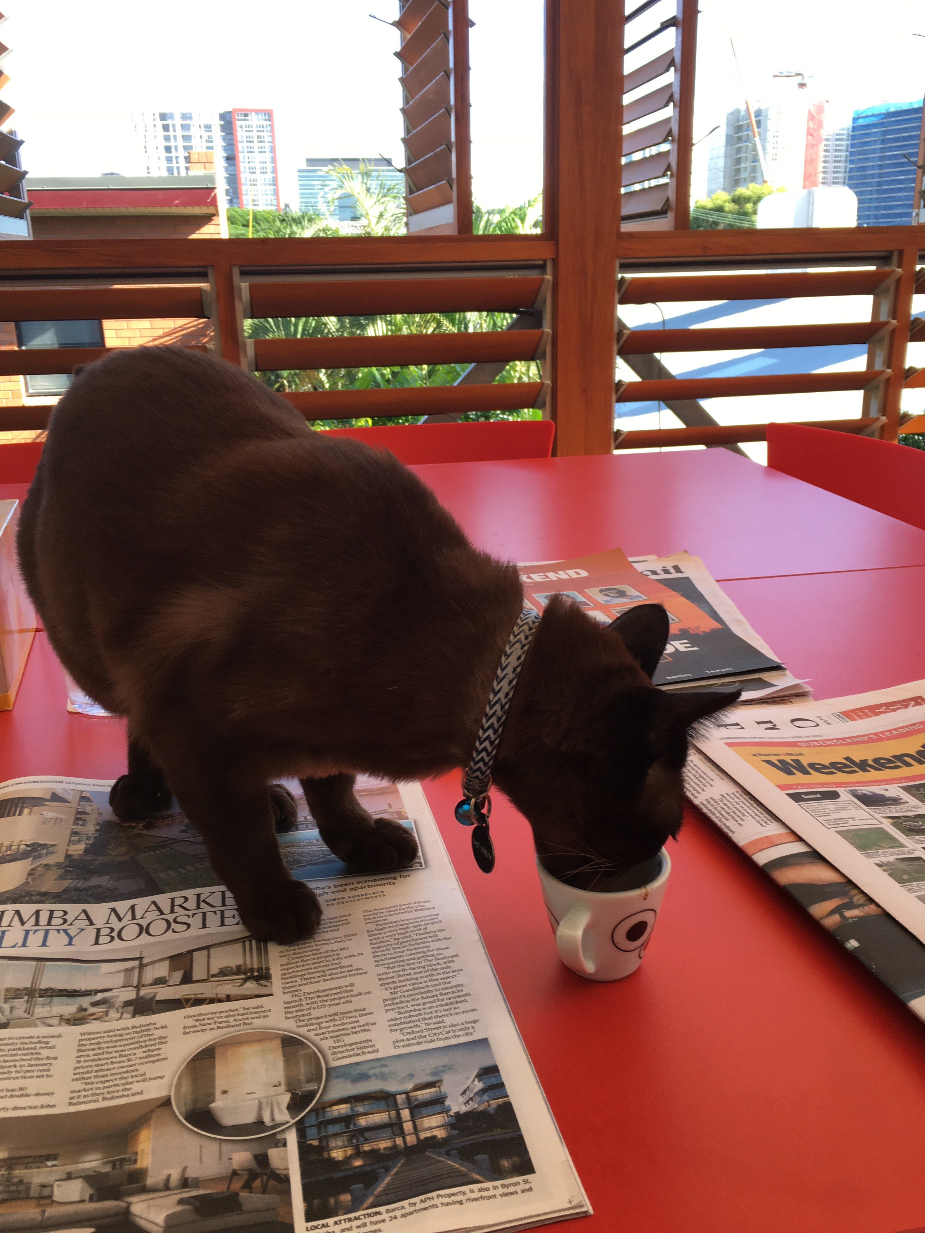 Albert drinking some milk