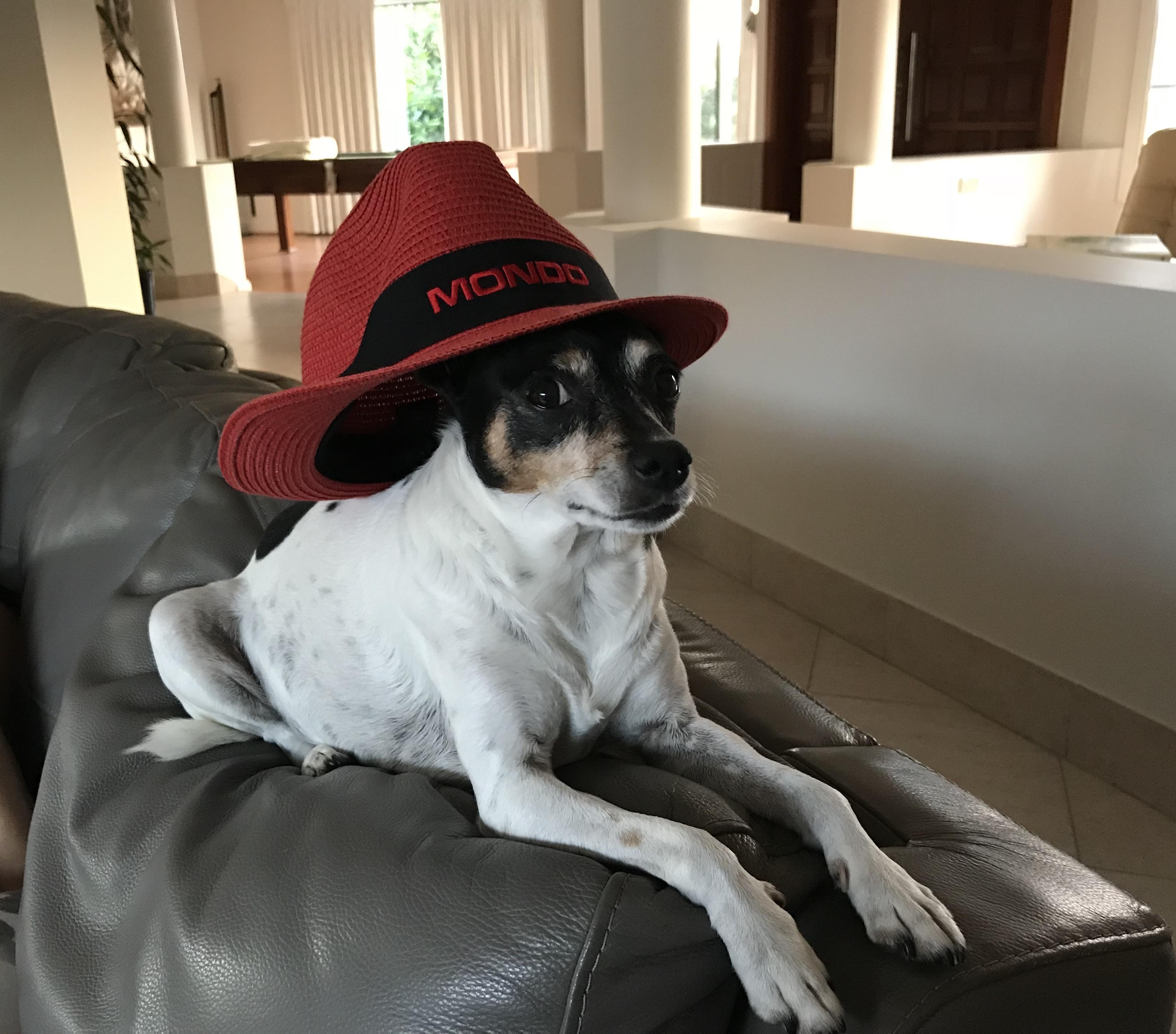 Bella loving the Mondo hat
