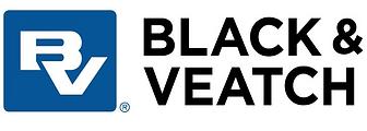 B_V_logo.png