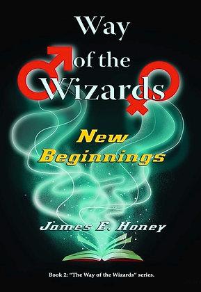 New Beginnings - Book II Way of the Wizards series