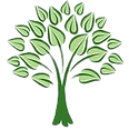 1924483e.northraleightree1.png