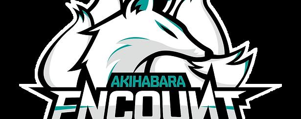 Akihabara Encount