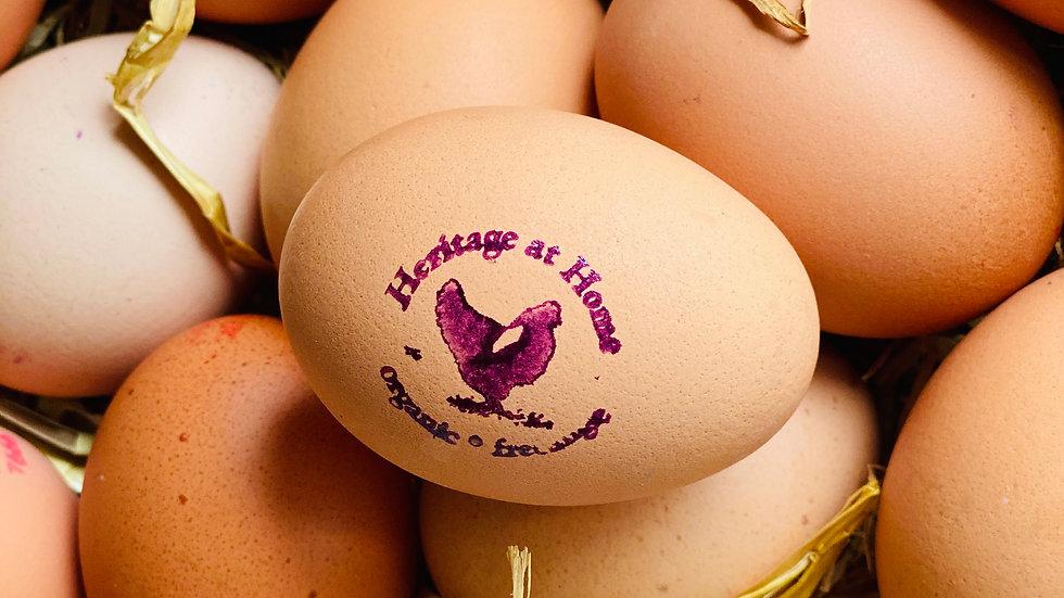 Organic Farm Eggs -1 Dozen